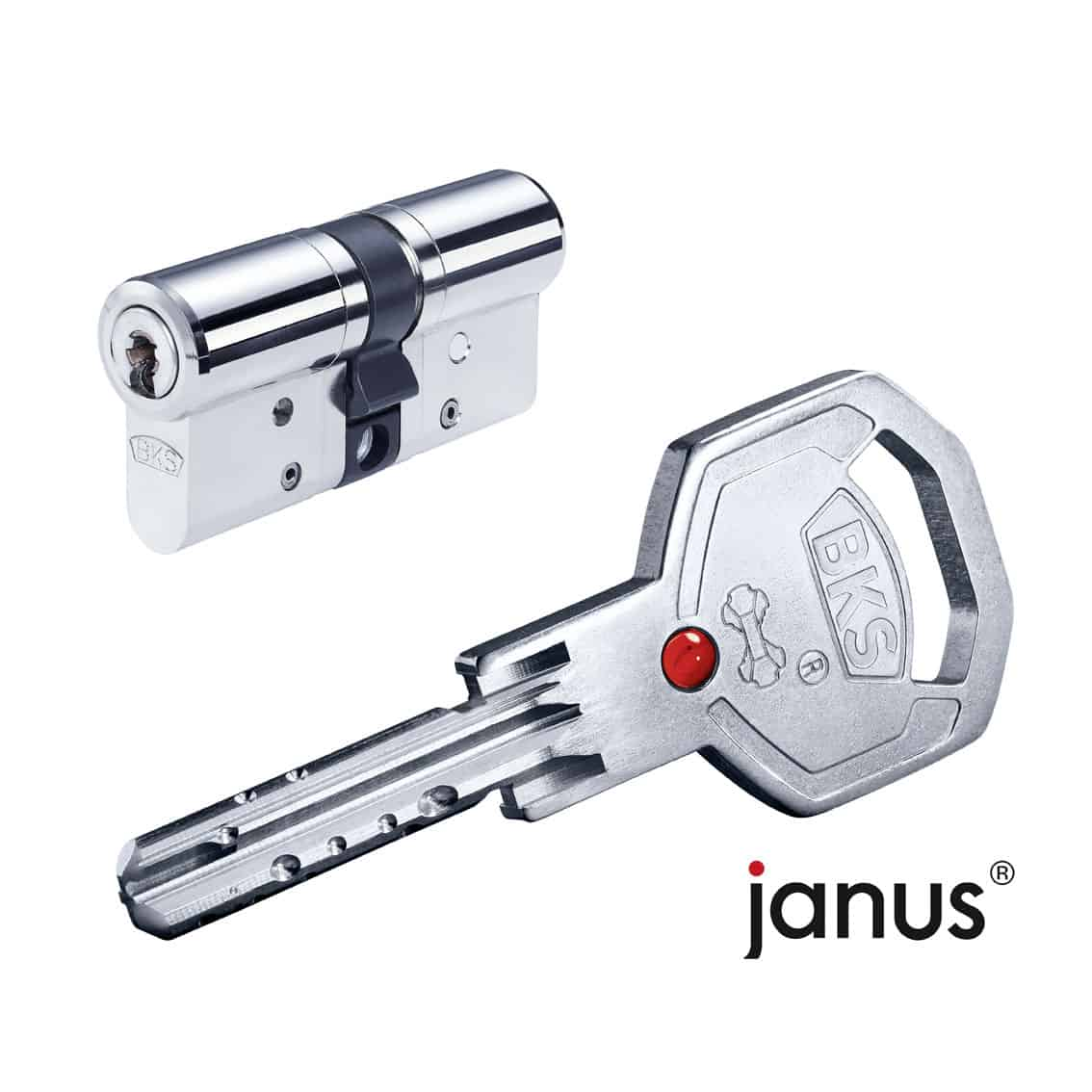 Schließsystem janus_RGB_72dpi